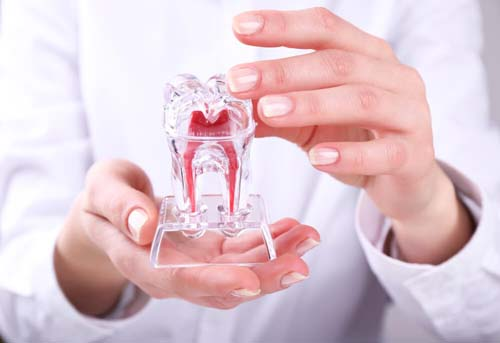 Emergency Dentist Connecticut