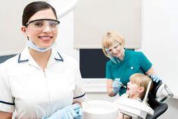 Holistic Dentist Allentown